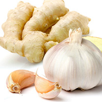 GarlicGinger