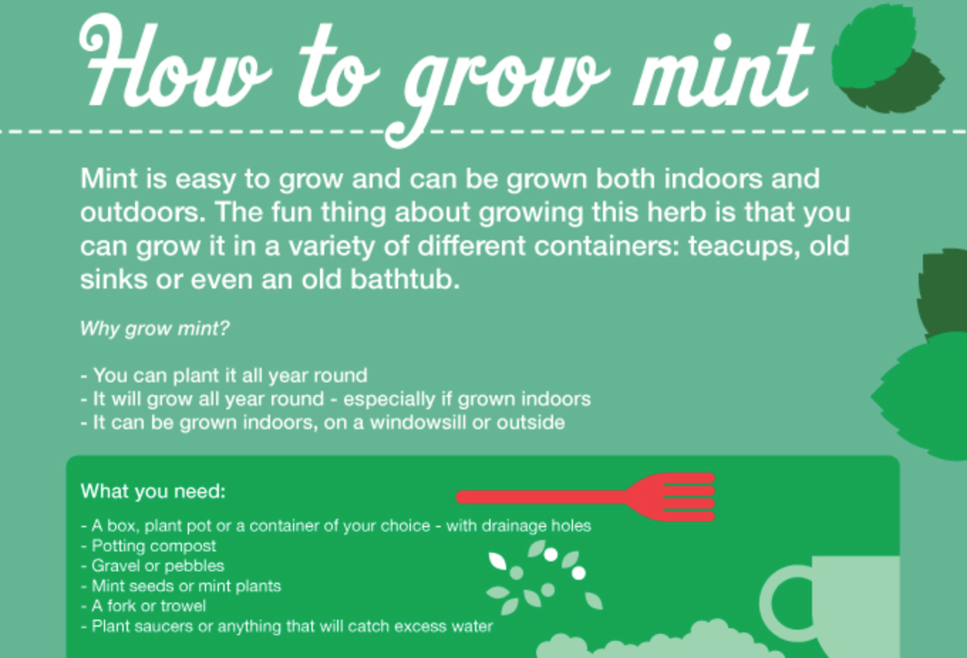 Growing Your Own Mint